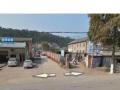 土地出租15亩 龙泉镇土门 靠汉宜路200米