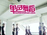 长沙侯家塘附近哪里有专业的少儿中国舞拉丁爵士街舞培训机