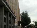 通顺 城市商业主干道旁 商业街卖场 15平米