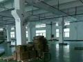 107国道边洪田新丰泽工业区一二楼厂房整层出租
