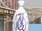 【厂家定制】石家庄飞龙 仿真瓶子气模 固