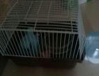 99成新 仓鼠宠物用品 38元
