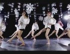 呼市专业舞蹈培训舞蹈演员承接商演夜店演出培训教学