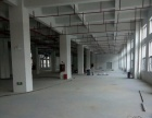 自建房批灰刷墙,墙面翻新,喷漆,墙面发霉,脱落维修