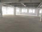 乐清17500平方独栋独门厂房仓库出租全新厂房