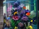 昆明鱼缸长期清洗维护服务 鱼缸维修 鱼缸造景
