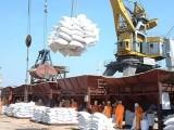 越南货运物流专线发货何时能到