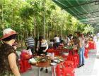 惠州全生态大亚湾绿色农家乐一日游