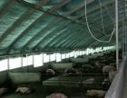 南漳 新建五千头规模猪场出售 厂房 80000平米