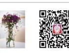 花小鲜【太原包月鲜花】