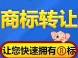 中国商标注册的流程