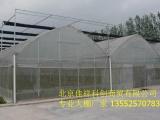 昌平区温室大棚建造价格 质优价廉 施工迅速