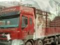 出售2009年霸龙前四后八仓栏货车