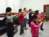 上海小提琴一对多小班培训 音乐学院专业老师