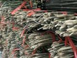 大量销售产地竹竿 2-3米菜架杆 4-9米大棚竹竿