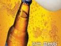 华盛大啤酒 华盛大啤酒诚邀加盟