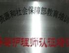 延边/延吉市 催乳师 /月嫂 专业培训