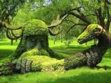 我公司專業制作設計藝術雕塑,人物雕塑,園林雕塑,玻璃鋼雕塑