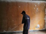 西安家庭灭蚊子,雁塔白蚁防治公司