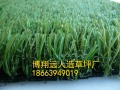 沈阳人造草坪生产厂家
