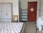 干净整洁的小公寓出租了丽苑小区