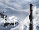 45度冰加盟 名酒 投资金额 1万元以下