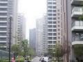 免中介费高沙商业街十字路口 地铁口一个红绿灯朝南独卫
