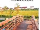 上海奉贤优质大米 贤城美谷 种植基地钓小龙虾农家乐钓鱼