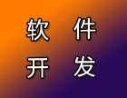 网站建设开发公司 +杭州洛妍网站软件开发HTML5