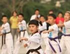 大兴黄村康乃馨奥通之星国际儿童培训跆拳道