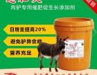 速肥灵肉驴催肥饲料添加剂 驴饲料配方