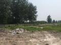 郢都南路成丰学校旁一万平空地出租