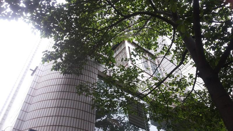 虹山片区 麻园灯具总厂小区 4室 2厅 105平米 整租