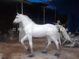 白马雕塑 玻璃钢动物雕塑