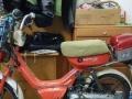 转让日本原装铃木FA50摩托车