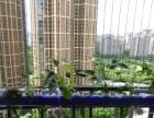 阳台种菜实现住在空中花园的梦想