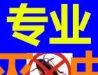 河南专业灭老鼠蚊蝇 蟑螂 虫蚁高效服务远离害虫烦恼