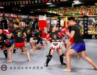 北京龙圣搏击俱乐部散打格斗培训