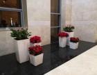 苏州新区花卉装饰,苏州小园丁园艺,专业绿植租摆方案免费设计