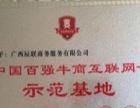 南宁市商标注册多少钱
