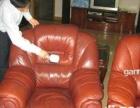新旧楼房 办公室开荒 清洗地毯布艺沙发瓷砖美缝