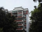 长乐村三期,三房整租,家具齐全,生活配套完善,翔鹭附近。