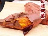 芝士焗番薯吃出小時候的味道