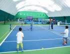 海淀区儿童网球免费啦!