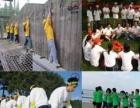 上海拓展训练的上海拓展公司