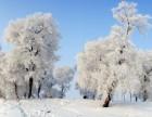 这个冬天到东北雪乡撒野,过个很东北的冬天
