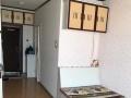 延吉中心区延大区依斯特 1室0厅 45平米 精装修