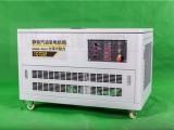 移动手推式12KW静音汽油发电机