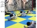 北京最好的跆拳道教育