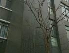 (出租) 阳逻开发区华中国际产业园全新厂房1000平米